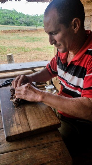 Cuban farmer rolling cigar