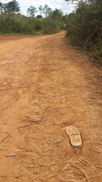 Shoe print dirt road Vinales