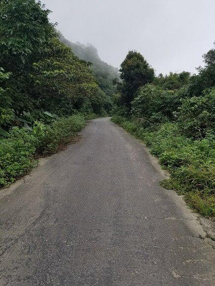 Son Tra Mountain Da Nang