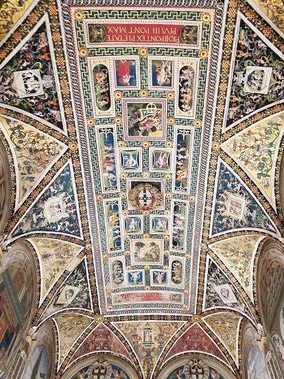 piccolimini library ceiling