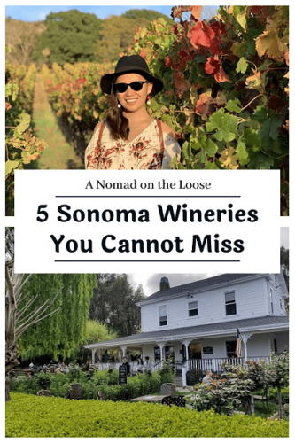 Best Wineries in Sonoma to Visit pin