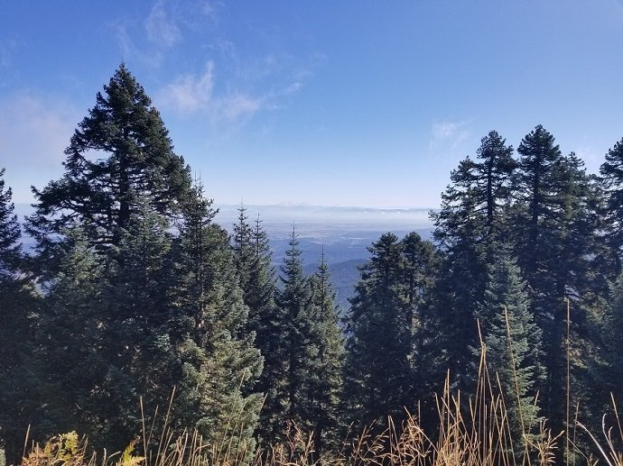 Marys Peak views