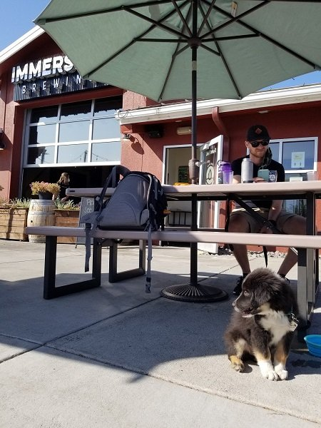 Immersion Brewing Bend