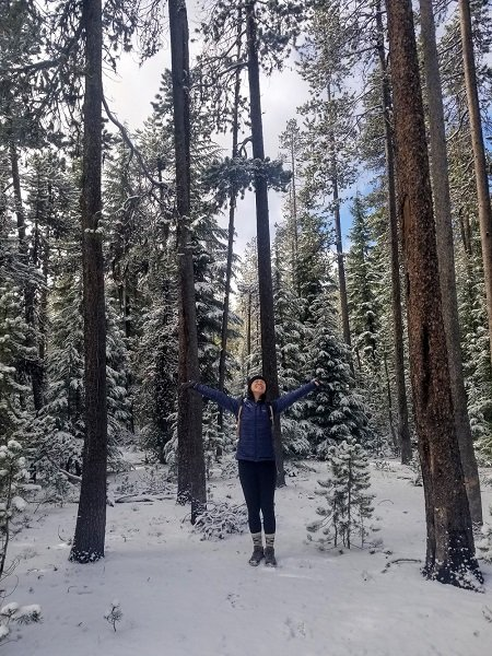 Newberry National Volcanic Monument snowy forest