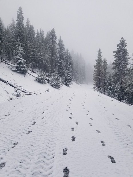 Paulina Peak trail covered in snow