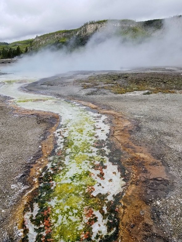 Biscuit Basin Yellowstone green brown thermal stream
