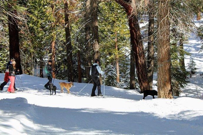 cross-country skiing tahoe