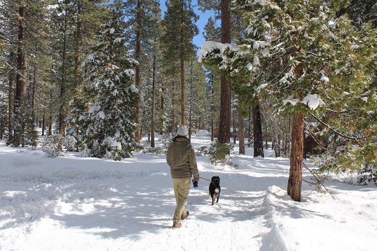 winter hiking Tahoe